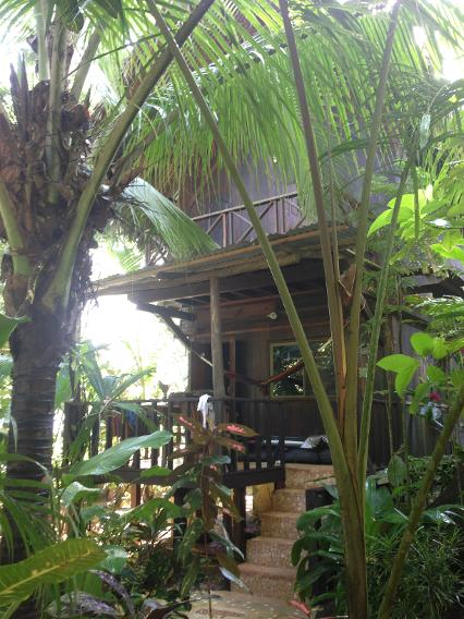 Red Frog Bungalow