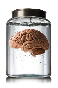 The Mysterious Case of 100 Missing Brains