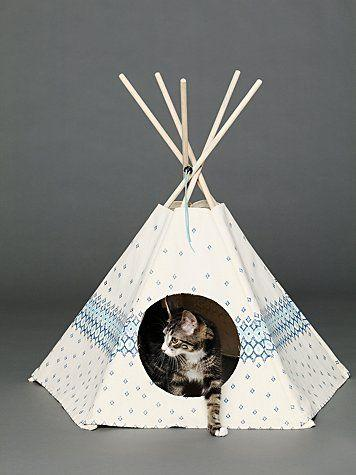 white minature cat tipi