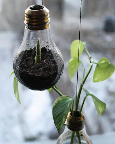 Bright Ideas to Recycle Old Light Bulbs