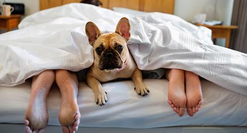 20 Things You Shouldn't Do Before Bed