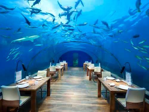 Anosent Blog Awesome Underwater Hotels - 10 star hotel rooms