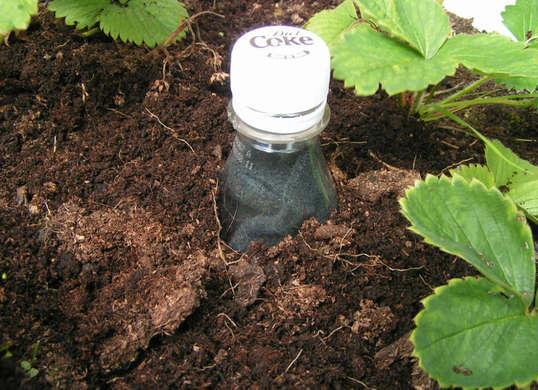 7 Dirt Cheap Garden Hacks to Make Your First Backyard Killer