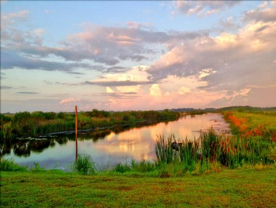 Barefoot Executive moreover 10 Reasons To Visit Lake Charles Louisiana in addition Outdoor Activities as well 200827561695 together with Louisianas Other City Why Lake Charles Should Be 128269080667. on wilbanks family history
