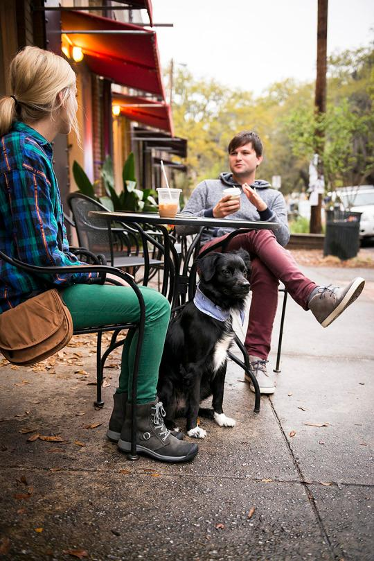 doggone is savannah the most dog friendly city in the u s