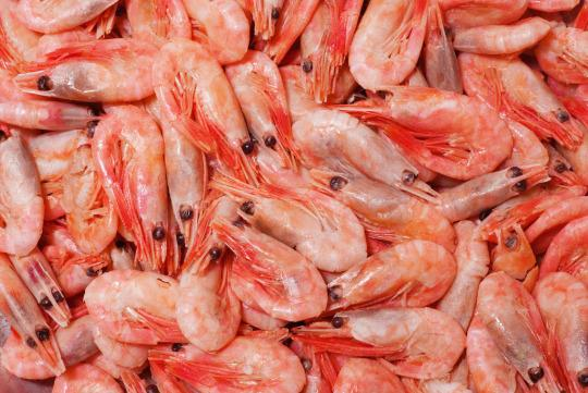 10 Types of Seafood You Really Shouldn't Eat (and 10 You Should)