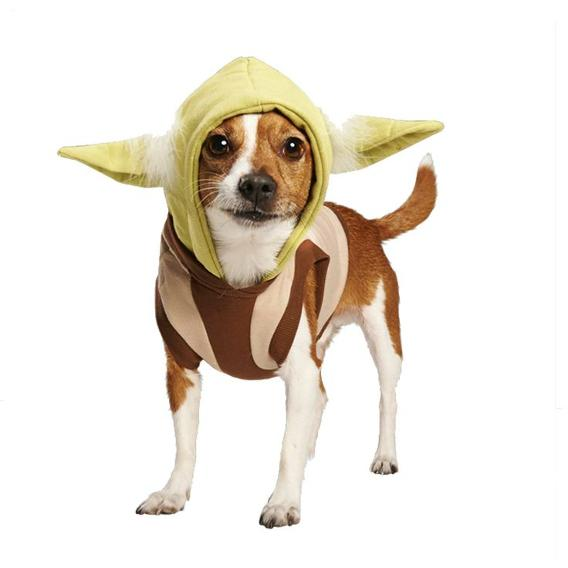 May The 4th Be With You Dog: May The 4th Be With You..and Your Pets