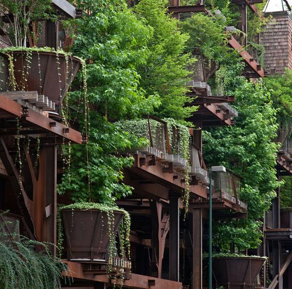 Treehouse Apartments: Mega-Treehouse Is An Entire Apartment Building