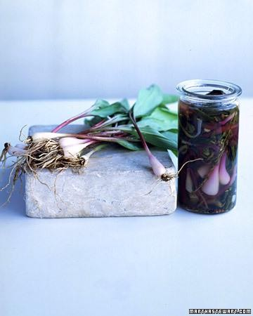 Pickled Ramps: How to Make This Famously Fleeting Vegetable Last All Year Long