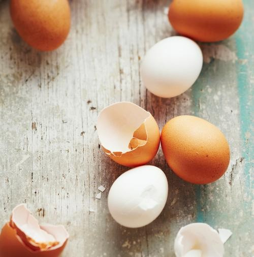 Will People Eat Synthetic Eggs?