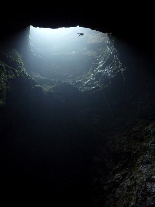 Harwood-Hole