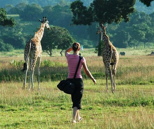Global Safaris: 8 Places to See Wild Animals Out of Africa