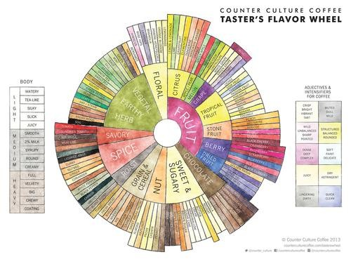 Flavor Wheels Help You Describe the Taste of Everything (Party Trick!)