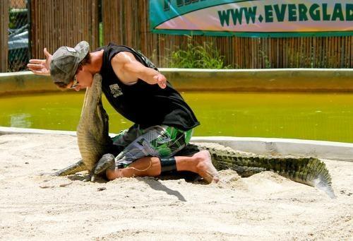 Travel Jobs: I Wrestle Alligators for a Living