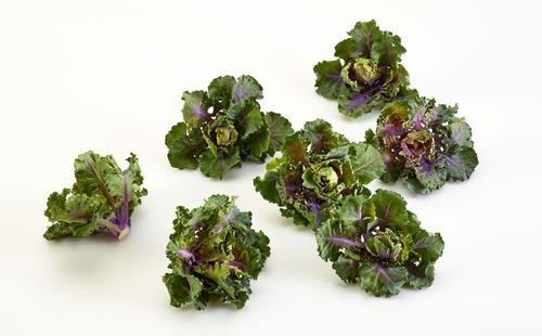 "Does the Name ""Kalettes"" Make Sense?"