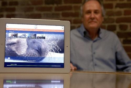 TiVo Founders Unveil $50 Gadget That Organizes All Your Internet Cat Videos
