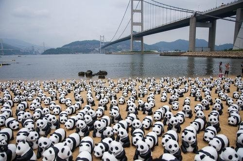 We Are Obsessed With This Art Exhibit causing Global Panda-monium!
