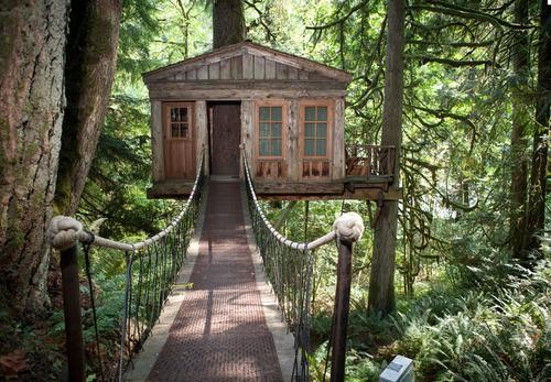 We Want to Spend the Night in One of These 8 Awesome Tree Houses