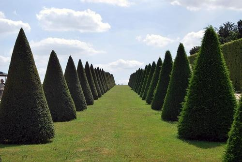 #Daydream: Roam the Gardens of Versailles