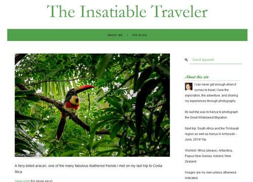 Step into the Wild with The Insatiable Traveler