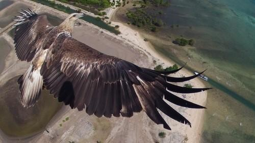 The Best Drone Photos of the Year