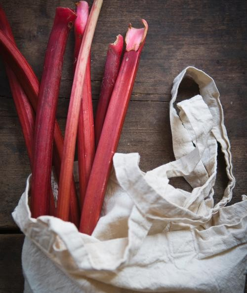 This Changes Everything: Rhubarb Salsa