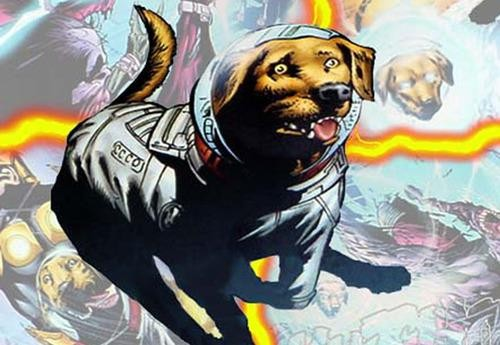 The Guardians of the Galaxy End Credits Scene  What Does It Mean Cosmo The Dog Guardians Of The Galaxy