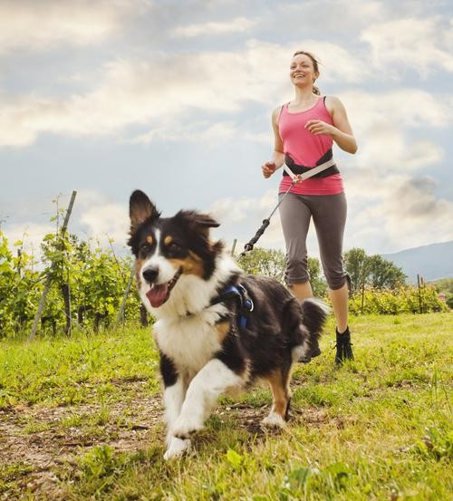 Get Fit With Fido, Flicka, and Flipper: How to Exercise With Animals