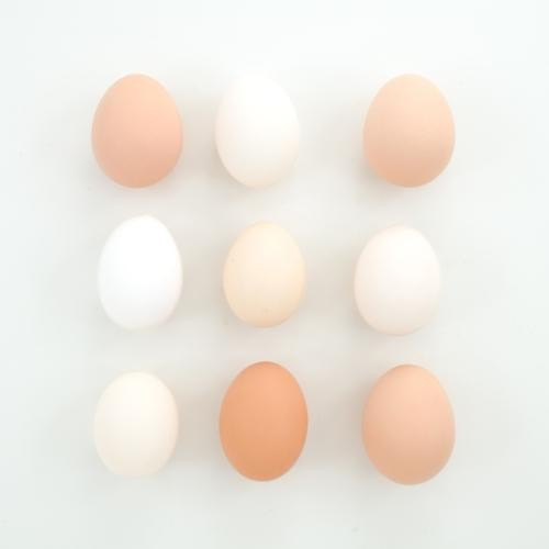 Are Brown Eggs Healthier Than White Eggs?