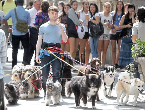 Smoking Daniel Radcliffe's Bizarre New Role
