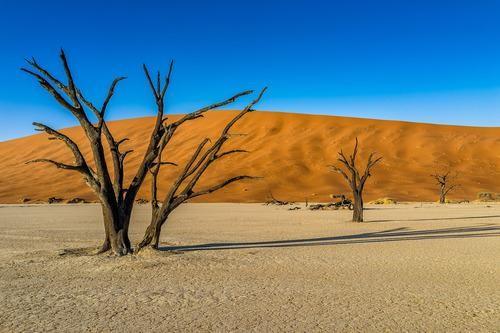 #Daydream: Namibia