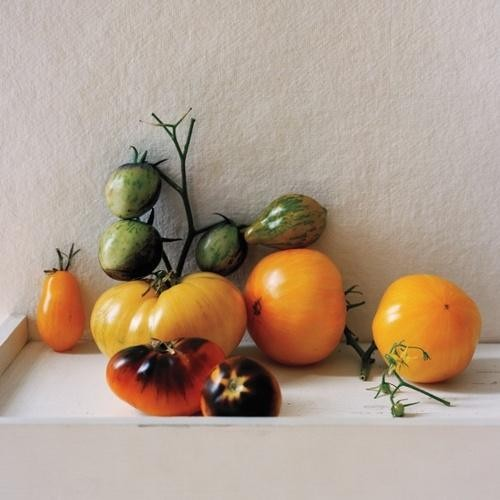 Blue Tomatoes and Other Weird Heirlooms