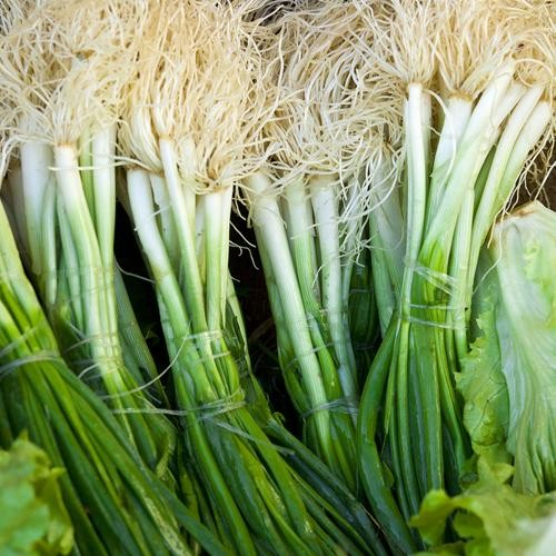 Scallions: The Best Thing to Buy, The Best Ways to Eat It—Now!