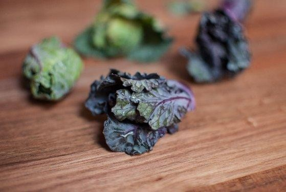 Lollipop Kale Is the Best New Vegetable You've Never Heard Of