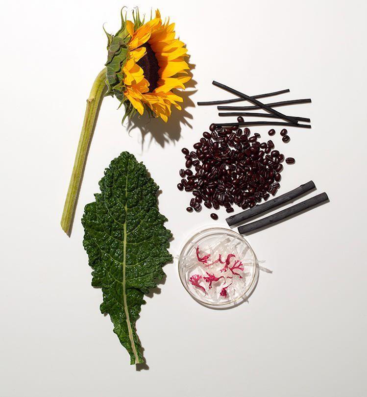 Good Foods Make Great Skincare Ingredients