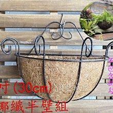 【園藝城堡】 12吋(30cm) 硬椰纖半壁組 歐式硬椰纖壁掛組  椰纖吊盆  吊盆 吊籃