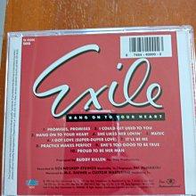 美國鄉村樂抒情天團 EXILE Hang On To Your Heart 專輯CD 99.999新