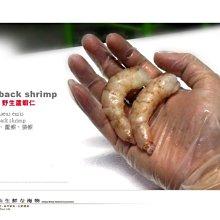 【水汕海物】特大海蘆蝦仁(無發泡) 野生撈捕 南亞 菲律賓沙邦 。優惠活動中~95折 !『門市熱銷、品質保證』