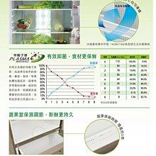 【可可電器】SAMPO聲寶 580L 時尚風華雙門電冰箱 SR-M58G / SRM58G《來電享優惠》