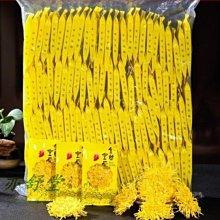 @@@   實惠裝 滿滿一袋 100朵 特級金絲皇菊 大黃菊朵 皇菊 菊花茶 一朵一杯大菊花質量保證