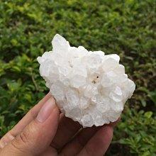 【小川堂】淨化 巴西 原礦(38) 正能量 純天然 清料 白水晶簇 鱷魚 骨幹 水晶 92g 附木座