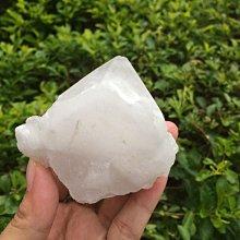 【小川堂】淨化 巴西 原礦(43) 正能量 純天然 清料 白水晶簇 鱷魚 骨幹 水晶 156g 附木座