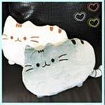 【Love Shop】新韓版 貓咪抱枕 靠墊 毛絨玩具貓咪 喵星人毛絨 可愛喵喵 吃貨貓抱枕/靠枕/辨公室