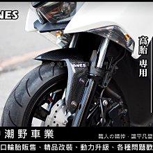 台中潮野車業 ONES 碳纖維前土除 SMAX FORCE 高胎適用