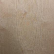 [台北市宏泰建材]歐洲樺木F1合板木板夾板4*8尺厚度6、9、12、15mm
