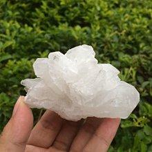 【小川堂】淨化 巴西 原礦(48) 正能量 純天然 清料 白水晶簇 鱷魚 骨幹 水晶 147g 附木座