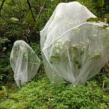 熊貓防蟲網 ~40網目超密,防蟲網,防鳥網,有機果樹必備網罩,有拉鍊可方便進出,長2米*寬2米*高2米,DIY網室