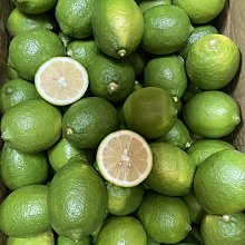 檸檬批發 賣場A級、B級台灣新鮮綠檸檬?1斤40元 外觀90%綠 漂亮無傷無花 屏東新鮮綠檸檬-雙園南北貨商行
