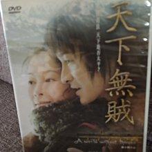 【天下無賊】劉若英/ 李冰冰/ 劉德華/ 葛優~DVD