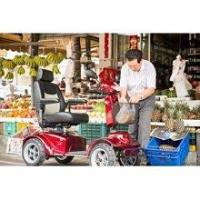 X7 S344 雙人座四輪代步車 / 美利馳 醫療器材 北區 總代理 永昌電動車